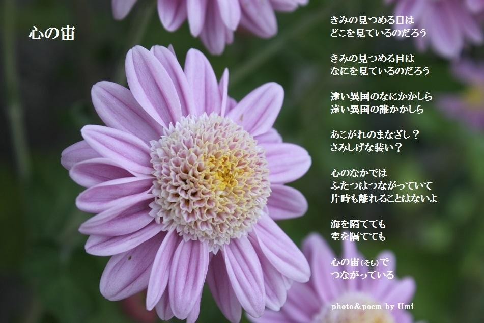 f0351844_20464870.jpg