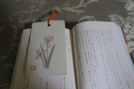 栞_e0292172_17222419.jpg