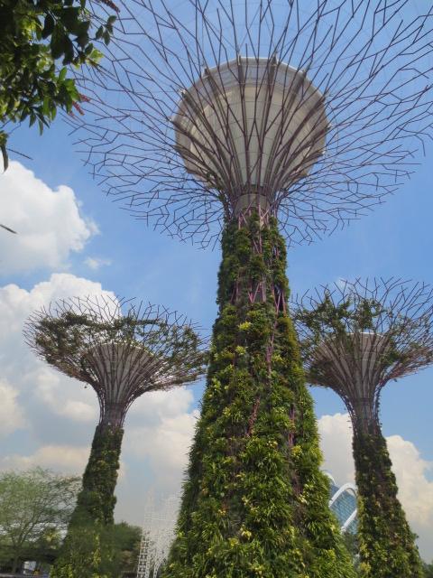 シンガポール旅行記 ①バイ・ザ・ベイとプラナカン_e0212073_16431723.jpg
