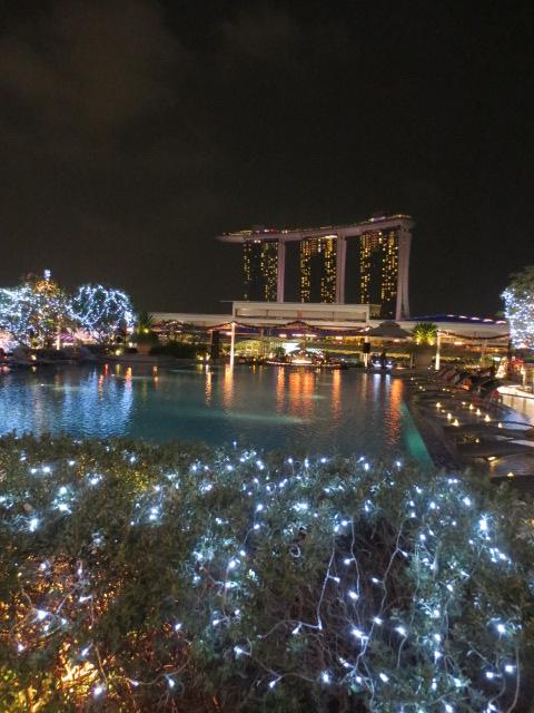 シンガポール旅行記 ②シンガポールチリクラブとシンガポールスリング_e0212073_20525957.jpg