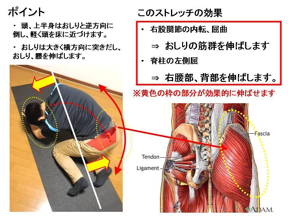 腰痛に効果的なセルフケア(おしり、股関節のストレッチ)_c0362789_22355699.jpg