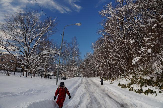大雪_d0162994_134033.jpg