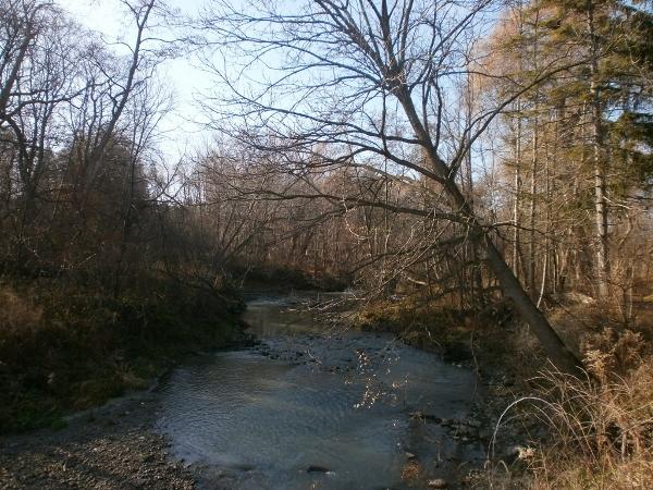 German Mills Creek_d0000995_1347895.jpg