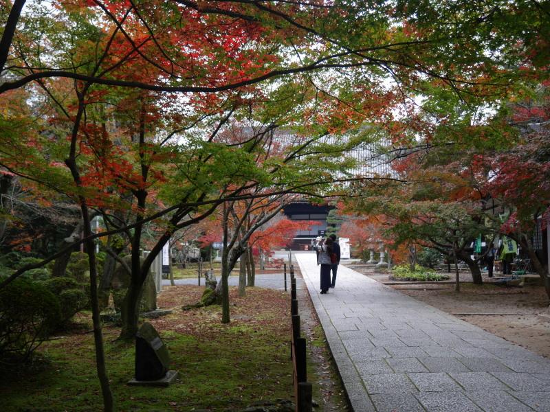 京都紅葉巡り1(光明寺)_c0360399_21545762.jpg