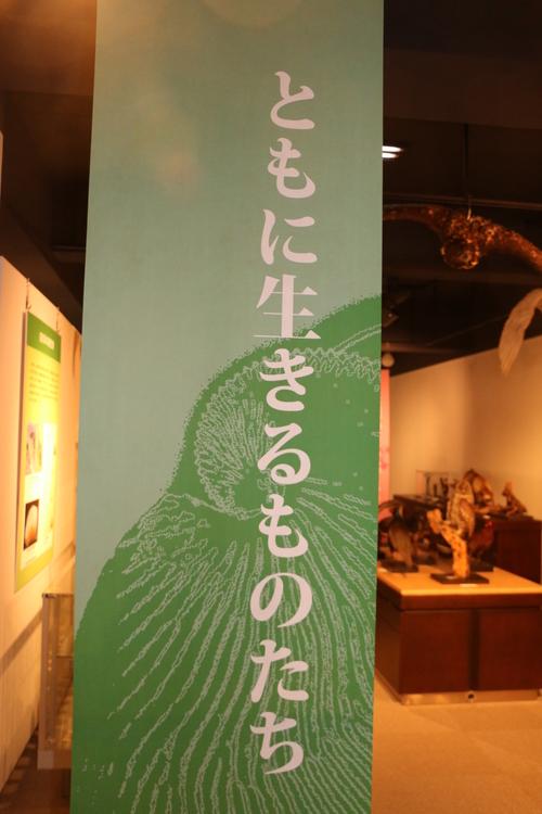 山形大学付属博物館 オープニングセレモニー・・・6_c0075701_16182940.jpg