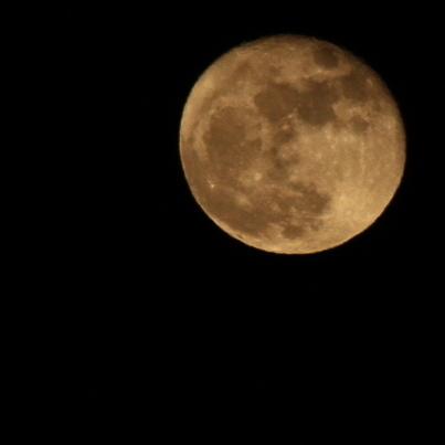 大きな月_a0000912_20160929.jpg