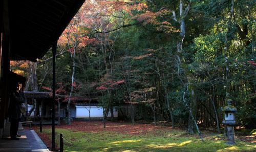 紅葉だより39 高桐院_e0048413_20243752.jpg