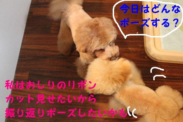 b0130018_2211910.jpg