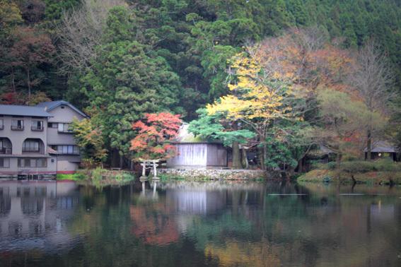 晩秋の湯布院、金鱗湖、紅葉、ギャラリー「風和里」etc_a0329820_16094259.jpg
