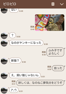 ふみ子ちゃんの正体_b0151748_11450781.png