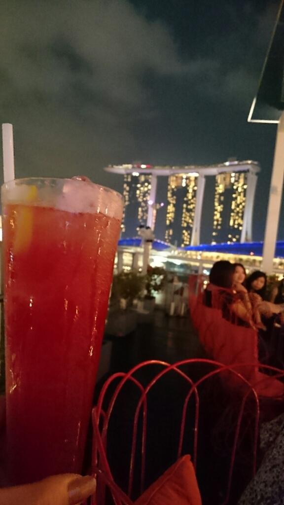 シンガポール旅行記 ②シンガポールチリクラブとシンガポールスリング_e0212073_14393481.jpg
