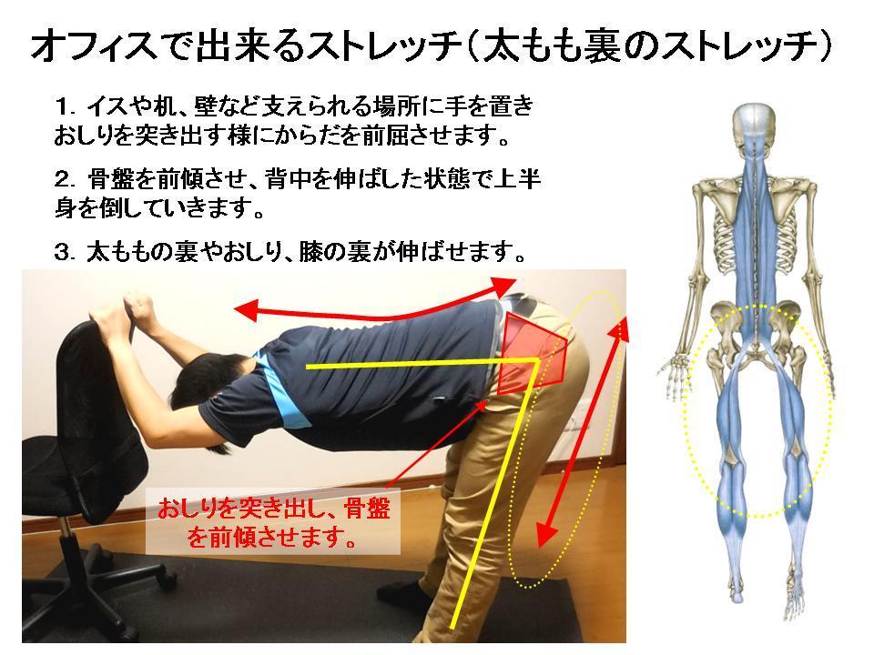 腰痛の改善に効果的なセルフケア(太もも裏、骨盤の姿勢)_c0362789_09522583.jpg