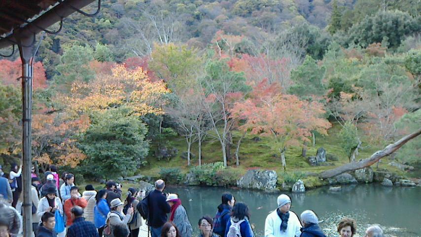京都近郊紅葉巡り3(石山寺・天竜寺)_c0360399_18141497.jpg