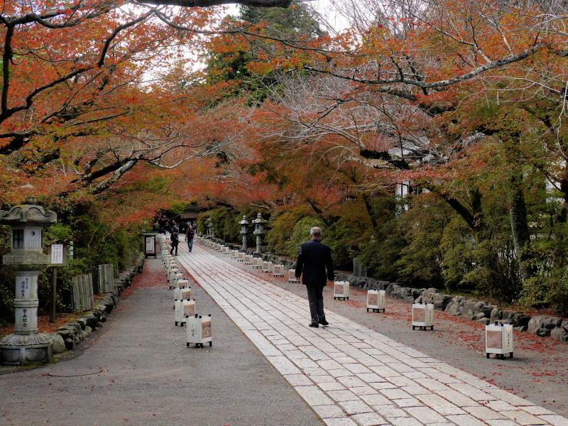 京都近郊紅葉巡り3(石山寺・天竜寺)_c0360399_1852781.jpg