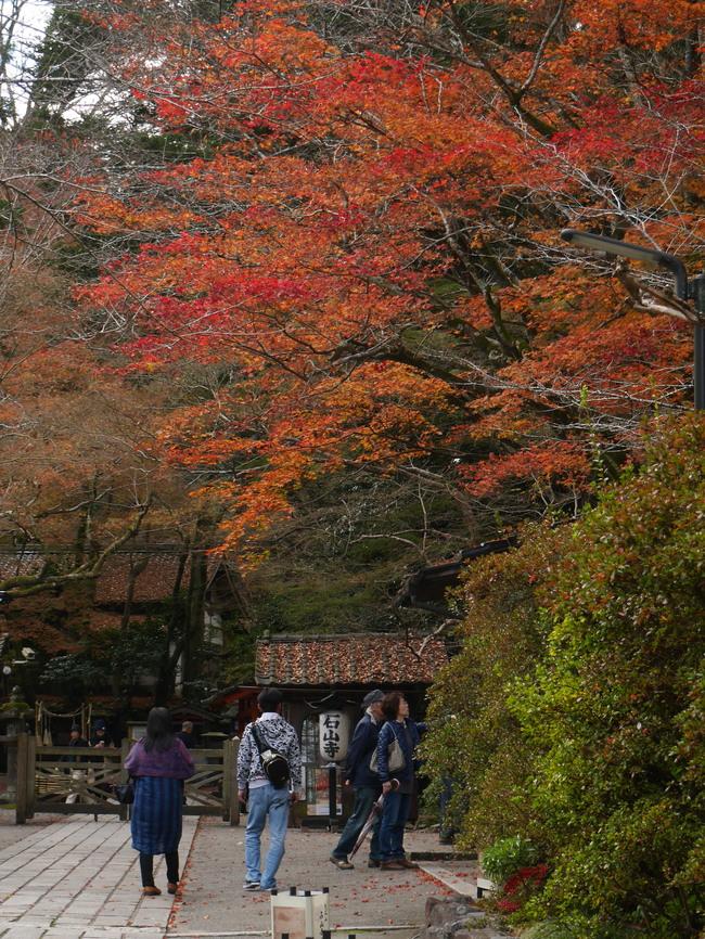 京都近郊紅葉巡り3(石山寺・天竜寺)_c0360399_1855578.jpg