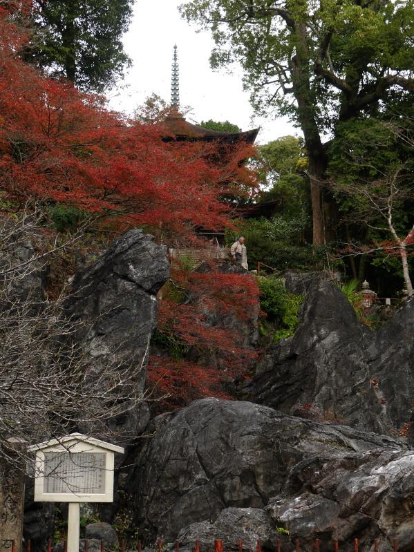 京都近郊紅葉巡り3(石山寺・天竜寺)_c0360399_1861727.jpg
