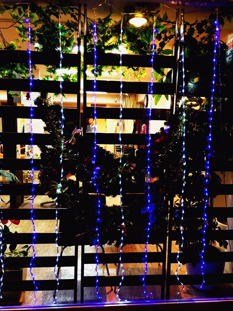 クリスマスの飾り付け_f0224804_1784188.jpg