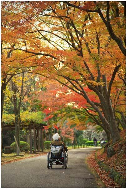 姫山公園_d0272207_19272233.jpg