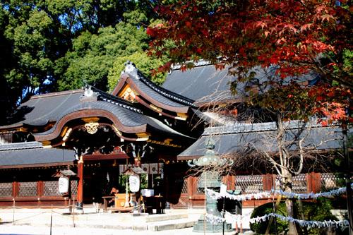 紅葉だより40 今宮神社_e0048413_21125485.jpg