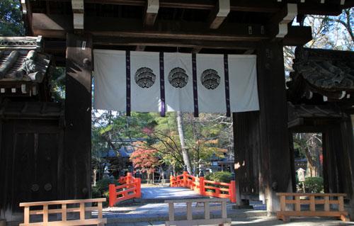 紅葉だより40 今宮神社_e0048413_21134223.jpg
