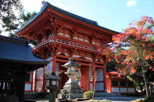 紅葉だより40 今宮神社_e0048413_21522100.jpg