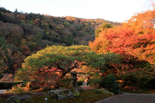 紅葉だより42 嵐山_e0048413_224932.jpg