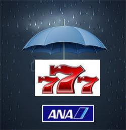 雨の。_b0044115_871997.jpg