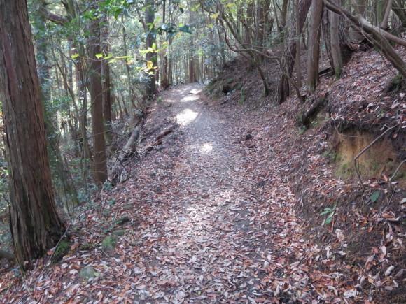 滝坂の道~下りは楽だと思ったら①~_c0001670_20074763.jpg