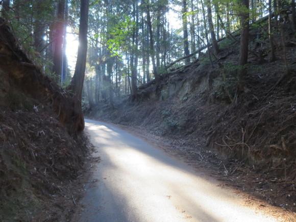 滝坂の道~下りは楽だと思ったら①~_c0001670_20080190.jpg