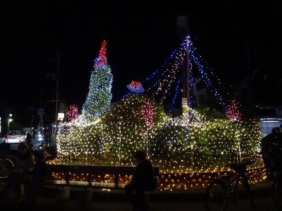 11月28日(土)第6回東逗子イルミネーション 光の夜まつり_e0006772_21312738.jpg