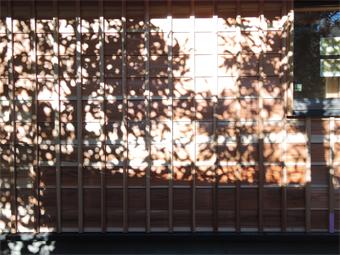 山泰荘の外壁と近くの神社の外壁_c0195909_1017156.jpg