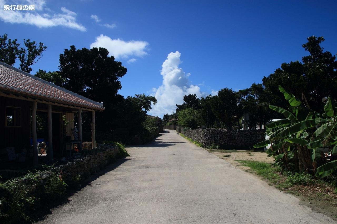 11月の石垣島は真夏日_b0313338_00324272.jpg