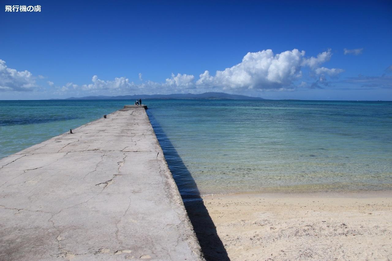 11月の石垣島は真夏日_b0313338_00353432.jpg