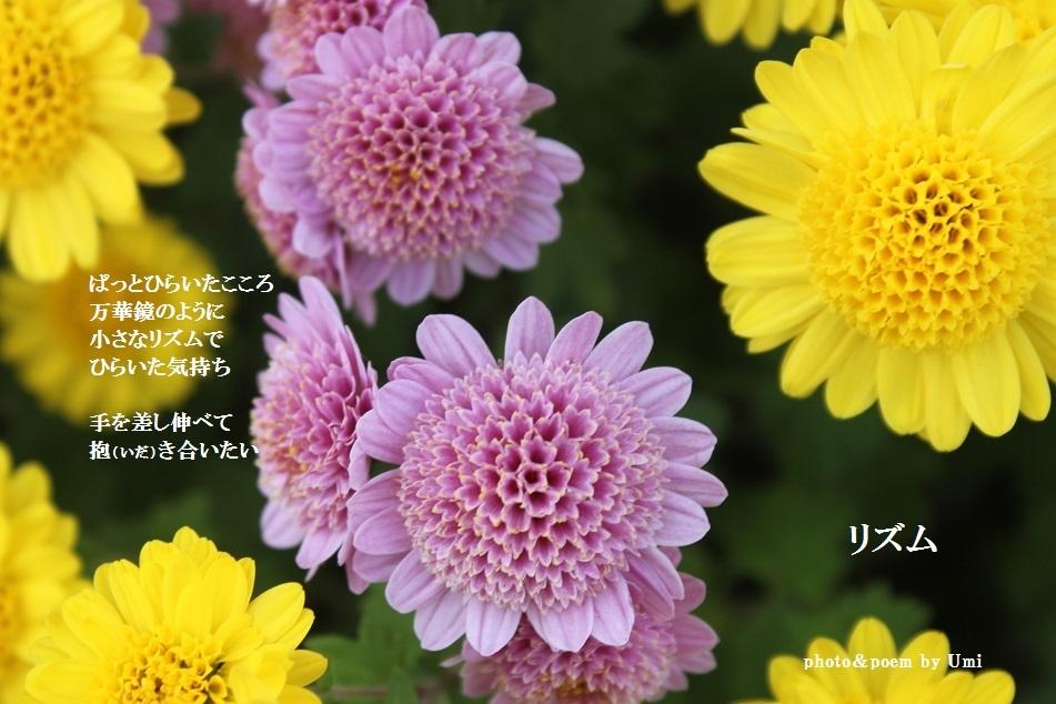 f0351844_16371975.jpg