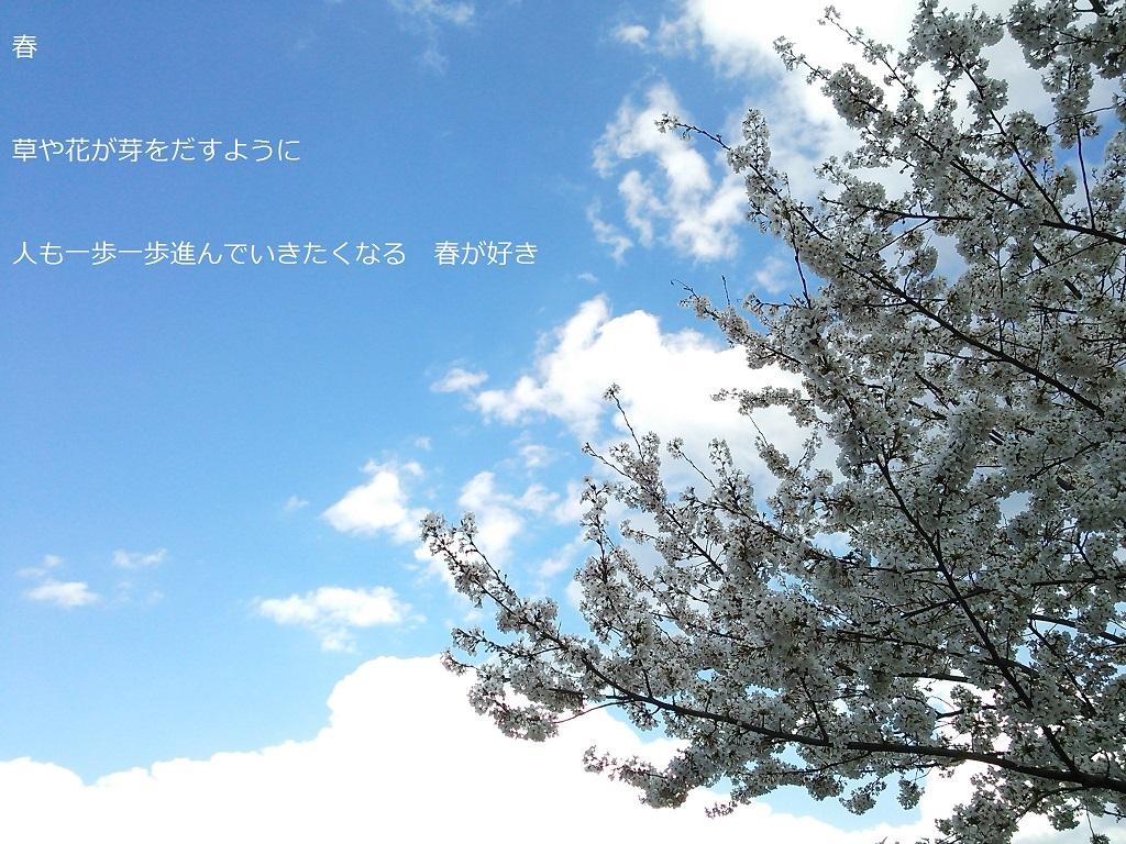 f0087347_15435621.jpg