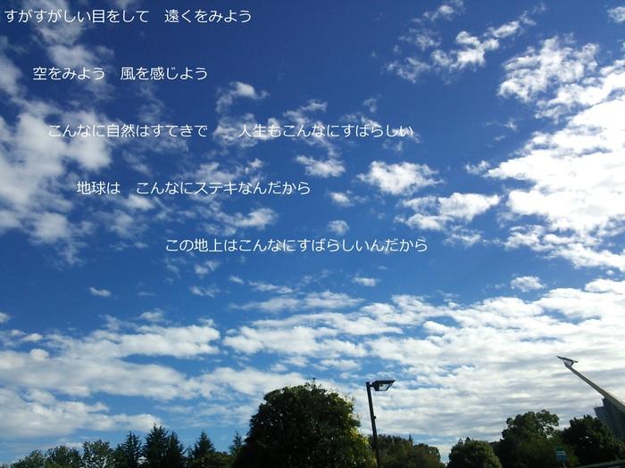 f0087347_1652536.jpg