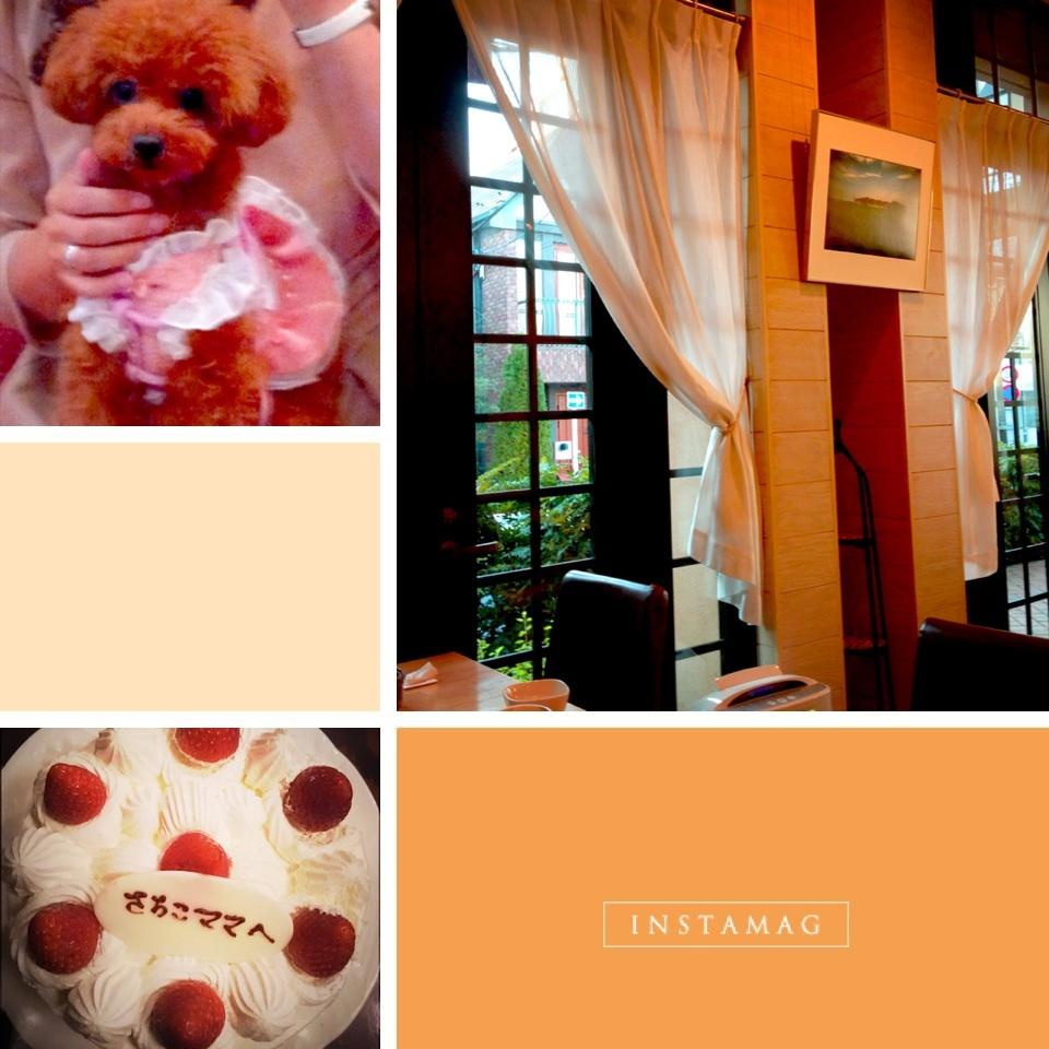 お稽古とケーキとりぼんちゃん_b0299052_10155672.jpg