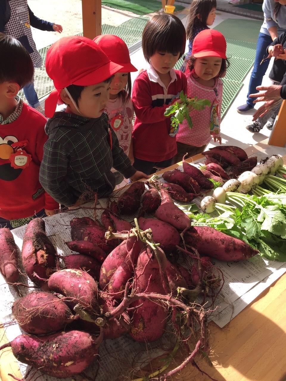 収穫感謝祭_f0324461_20080676.jpeg