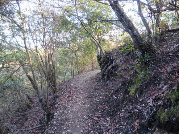滝坂の道~下りは楽だと思ったら②~_c0001670_11375968.jpg