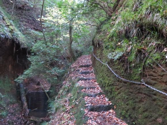 滝坂の道~下りは楽だと思ったら②~_c0001670_11434611.jpg