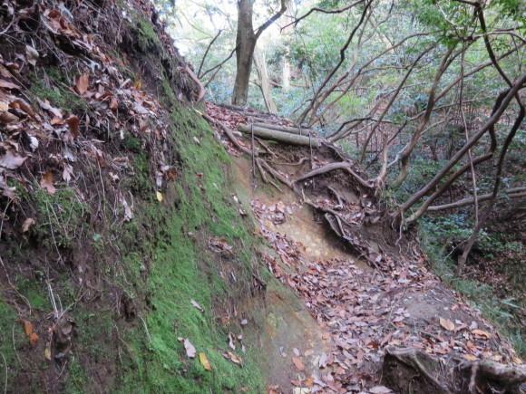 滝坂の道~下りは楽だと思ったら②~_c0001670_11472548.jpg