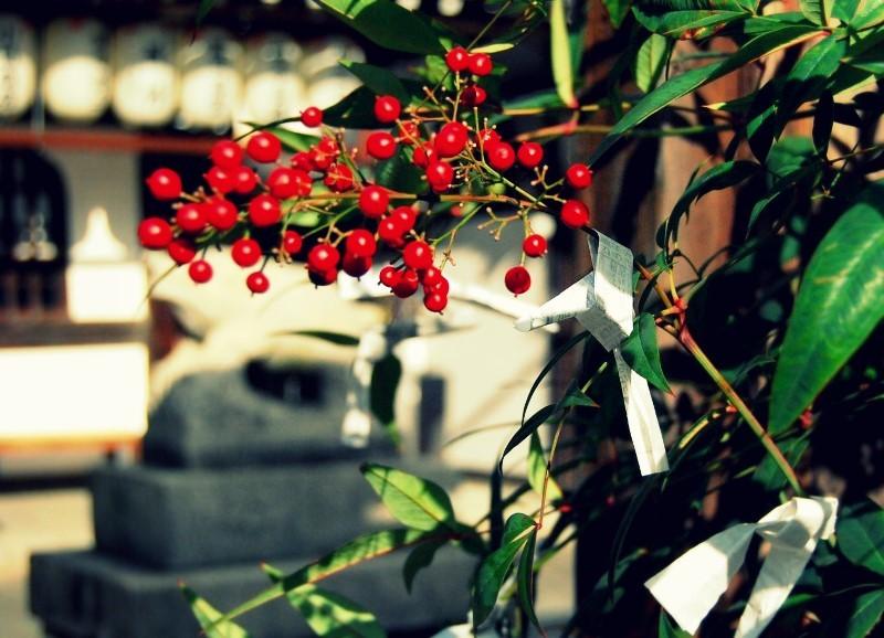 阿波和三盆と初お点前。祇園「圓堂」の天ぷら_b0165872_12221675.jpg