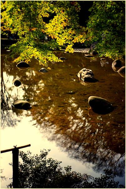 東京の秋 -1_b0340572_2056364.jpg
