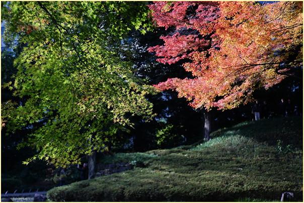 東京の秋 -1_b0340572_20584826.jpg