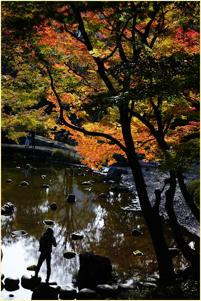 東京の秋 -2_b0340572_21215159.jpg