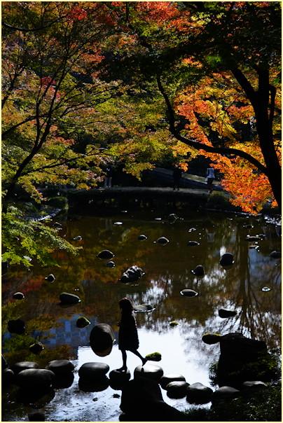 東京の秋 -2_b0340572_21221092.jpg