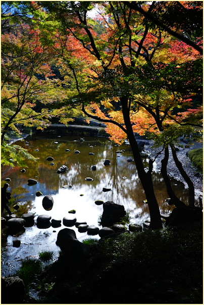 東京の秋 -2_b0340572_21225116.jpg
