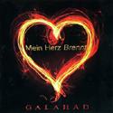 まさかのRammsteinカバー! GALAHADのアルバム未収録曲EPをGET!_c0072376_13375379.jpg