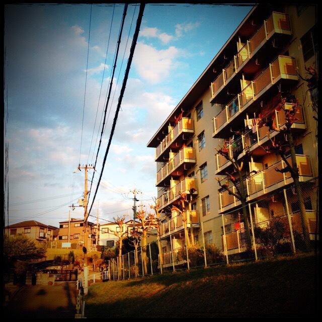 f0100480_0173038.jpg