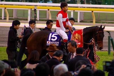 牝馬の時代は続く、ジャパンCはショウナンパンドラがGI2勝目を飾る _b0015386_22282762.jpg